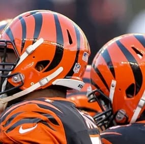 Cheap Discount Cincinnati Bengals Tickets for Military & Government | GovX  for cheap